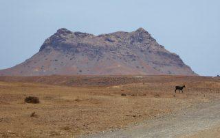 Cap Verde Urlaubsreisen mit Boa Vista